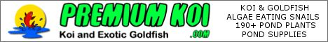 Premium Koi - Koi, Pond Plants and Pond Supplies - One Stop Pond Shopping